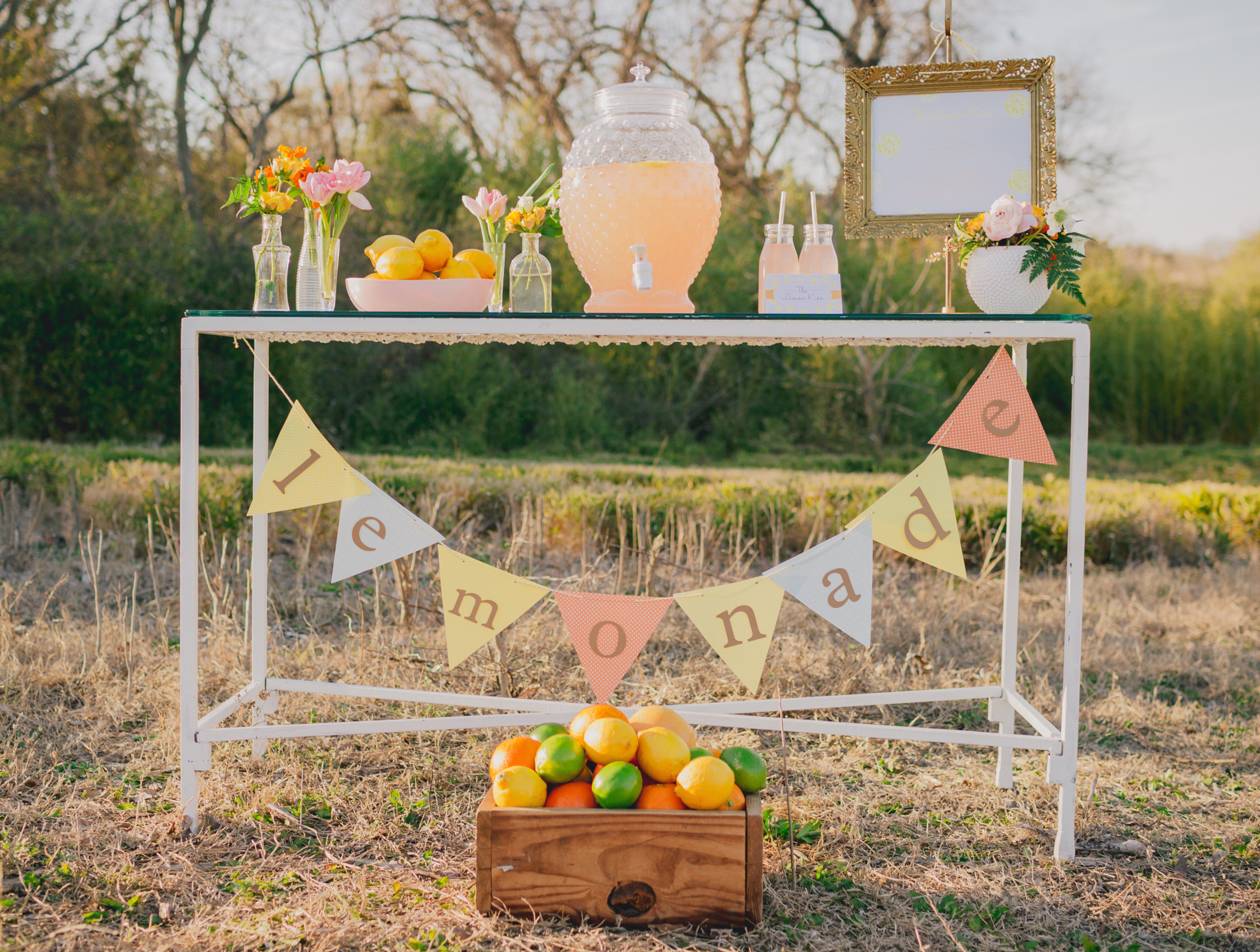 Chic Lemonade Stand + The Lemon Kiss Cocktail