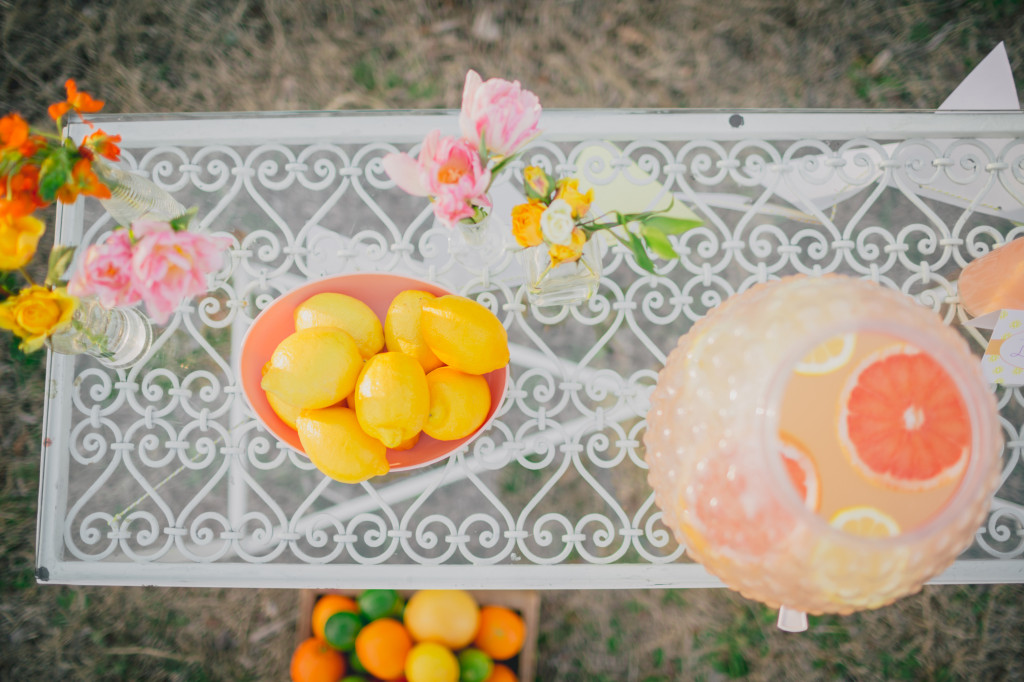 Chic Lemonade Stand