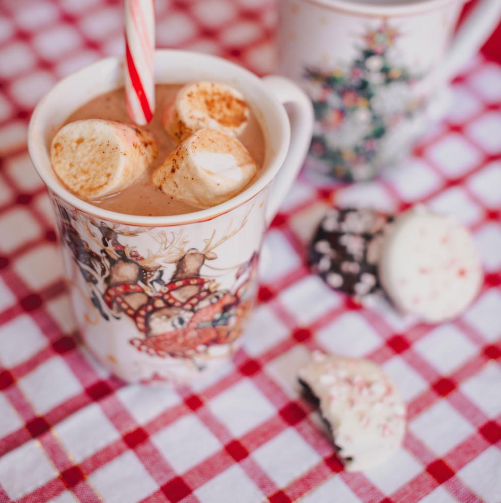 Santa's Spiked Hot Cocoa Photo