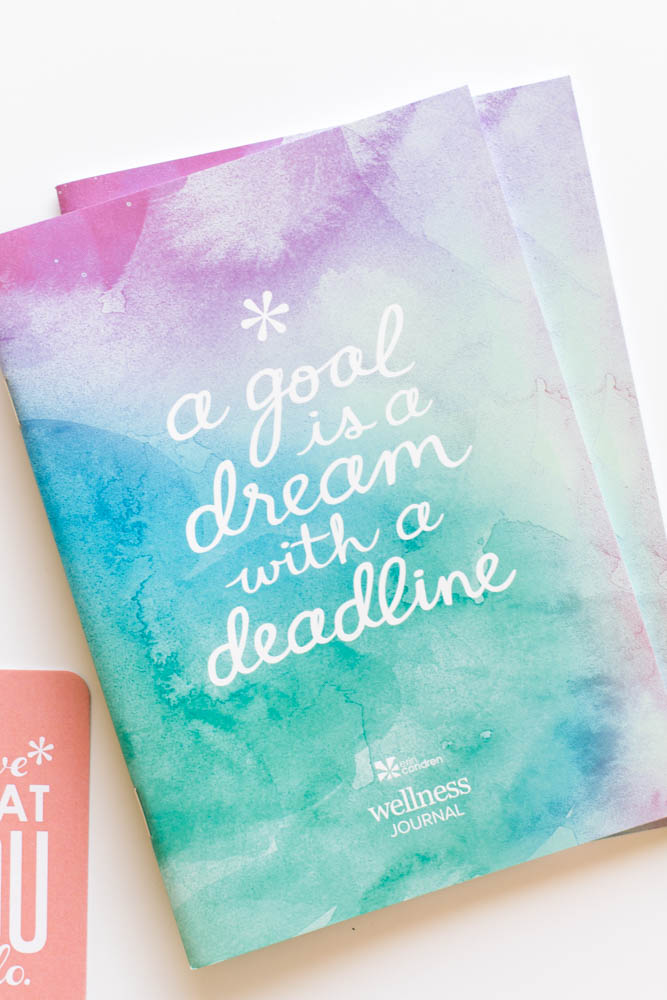Erin Condren Design wellness journal