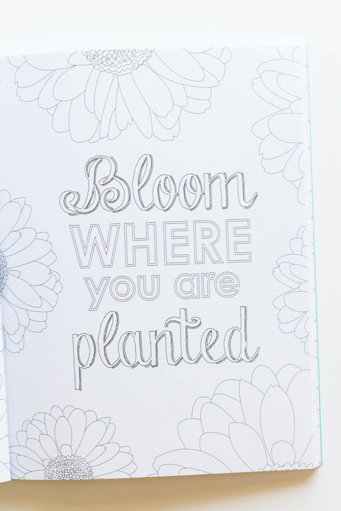 Erin Condren Design bloom where you are planted
